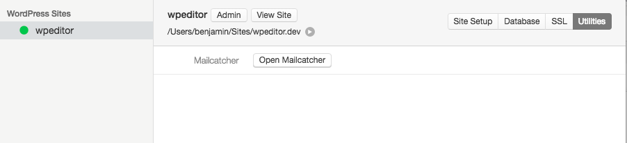 mailcatcher-launch